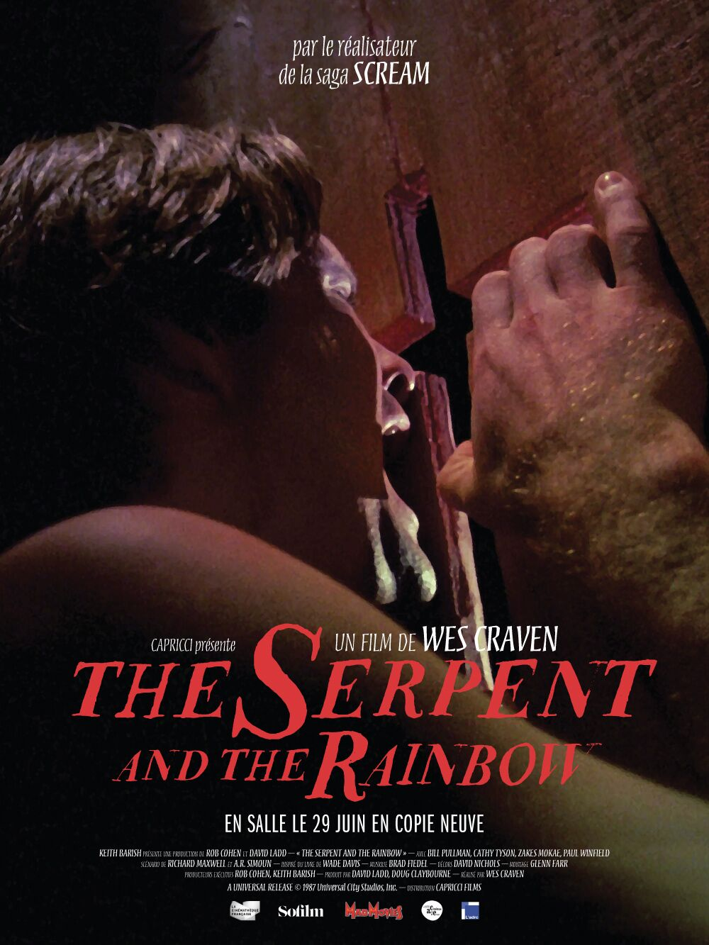 affiche The Serpent and the Rainbow